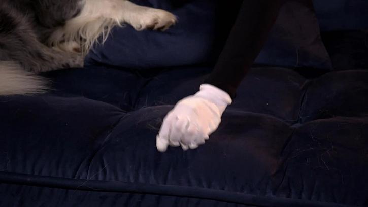 Setření chlupů ze sedačky