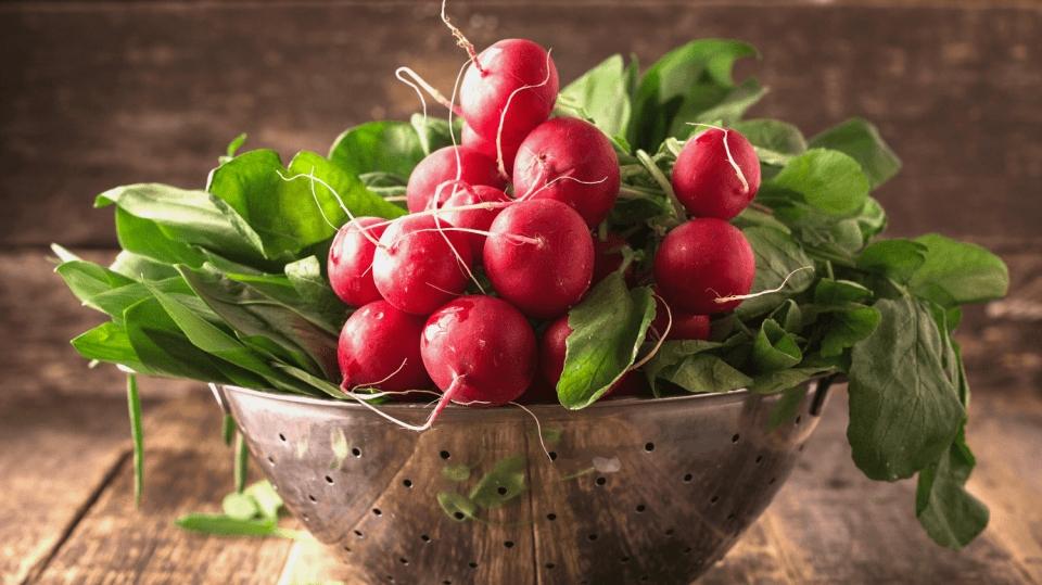 Jarní pěstování ředkviček: Objevte tajemství postupné sklizně