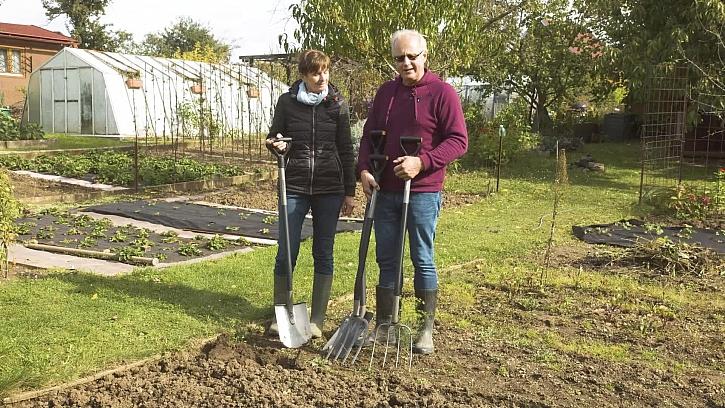 Jak upravit půdu na podzim