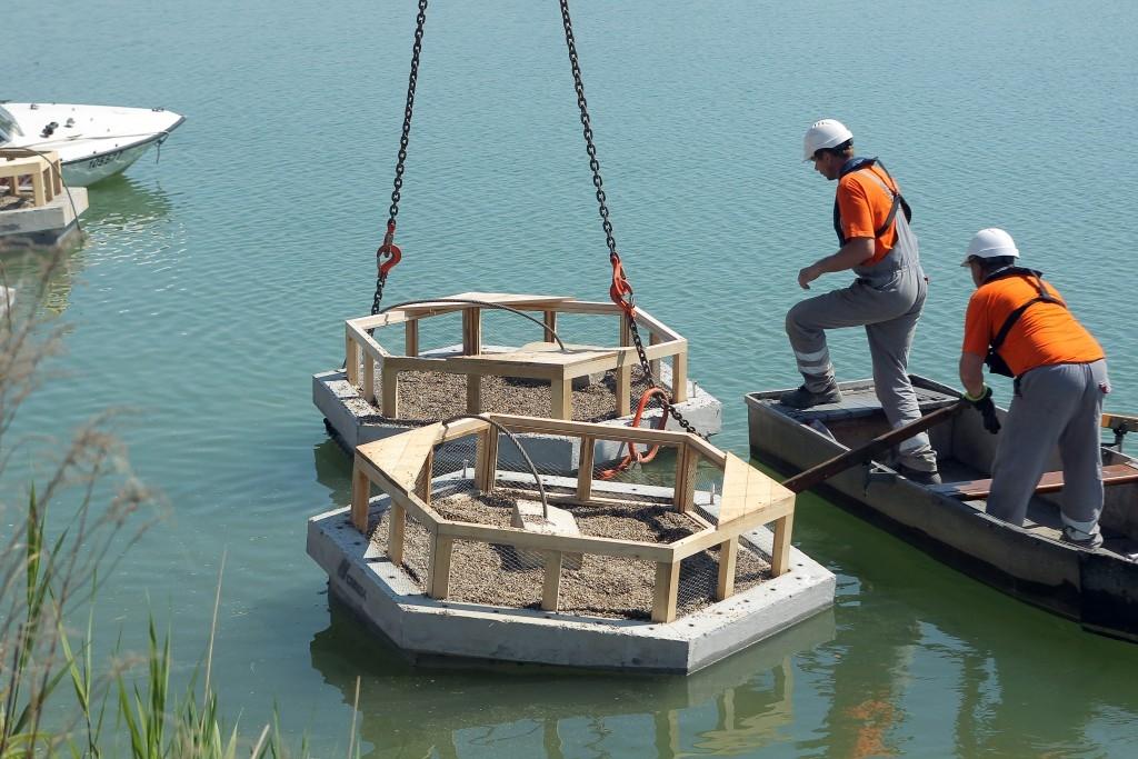 CEMEX umístil na dobříňskou štěrkovnu čtyři ptačí hnízdiště