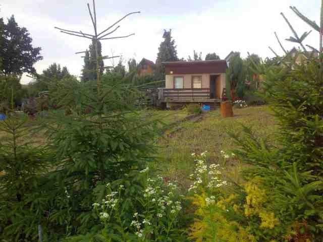 Nová zahrada a soukromí