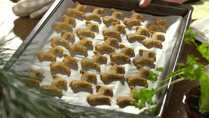 Rozložení sušenek na plechu