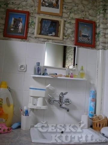 Rekonstrukce: koupelna naší čtenářky