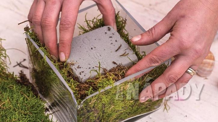 Jak vyrobit romantickou dekoraci ze šnečích ulit 5