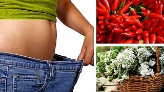 7 super bylin na hubnutí: Víme, jak se zbavit nadbytečných kil