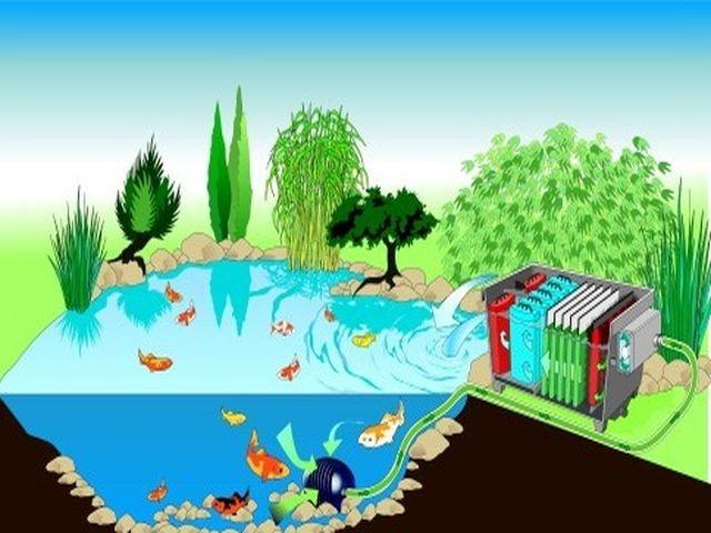 Nádherný vodní svět