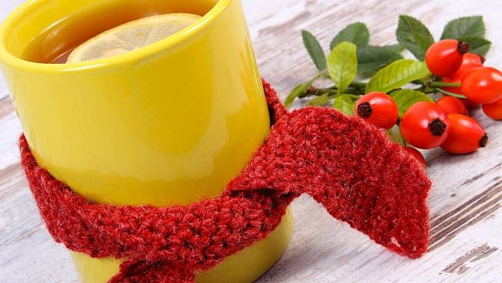 Chřipka útočí: vezměte si na pomoc byliny