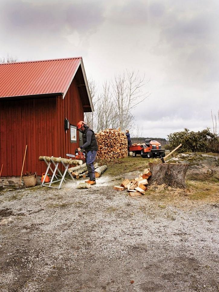 Cena dřeva