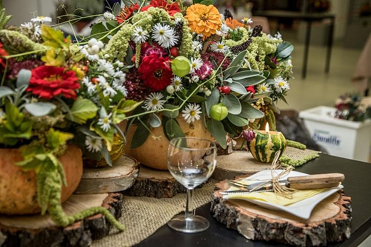 Podzimní výstava Flora Olomouc poukáže na vnitřní krásu rostlin a zdraví plodů (Zdroj: Flora Olomouc)