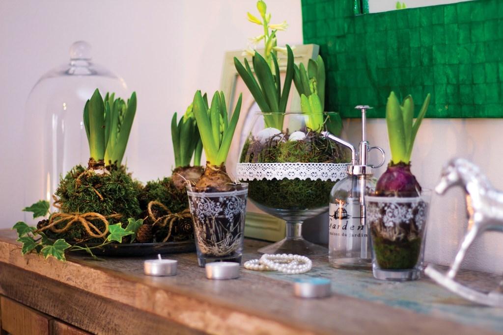 Aranžmá s hyacinty: Dekorace, která dokáže přivolat jaro
