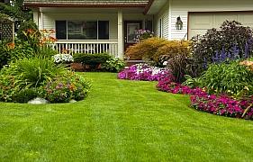 Hnojiva pro trávník na jaře