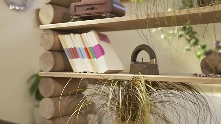 Knihovna z kulatiny