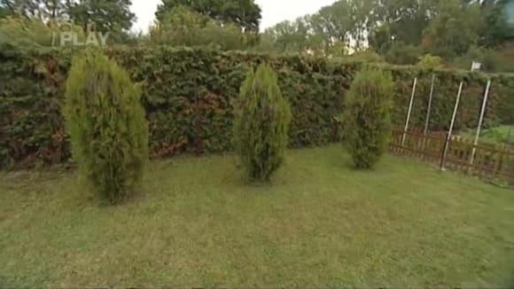 Vertikutace trávníku a jeho zazimování