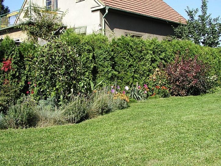 Co všechno stihnout na zahradě