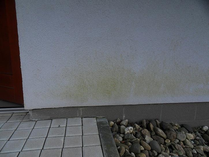 Napadení fasády řasou