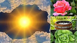 Předpověď počasí na první červnový víkend: Co dělat na zahradě