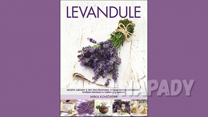 Krabičky na levandulové květy 8