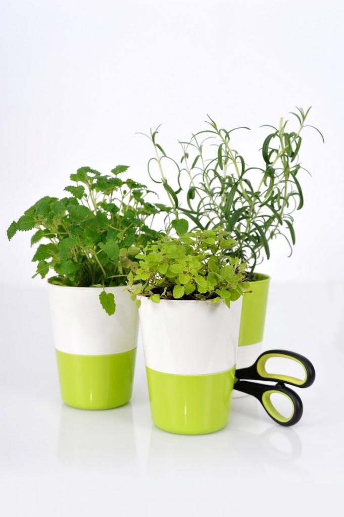 Tip na bylinkový květináč