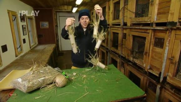 Jak si vyrobit hračku pro králíky
