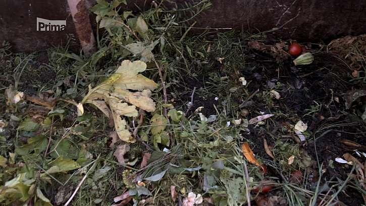 Vrstva kompostovaného rostlinného materiálu.