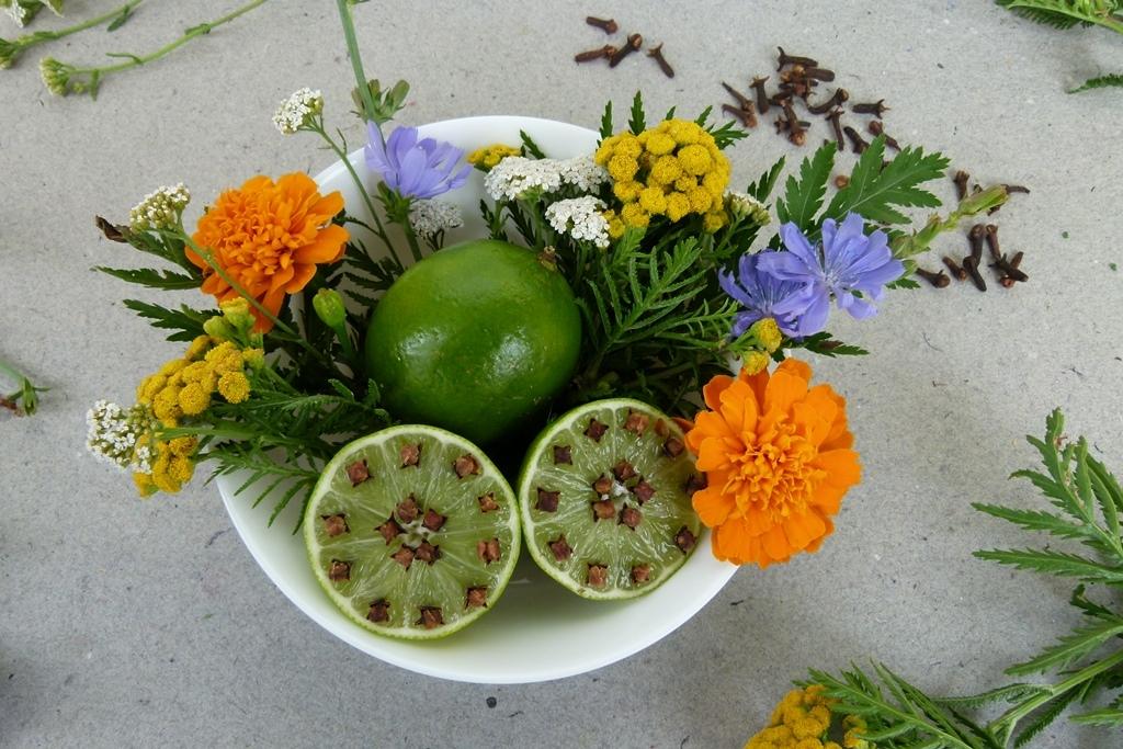 Jak udržet komáry dál od našeho stolu: Limetky a voňavý hřebíček