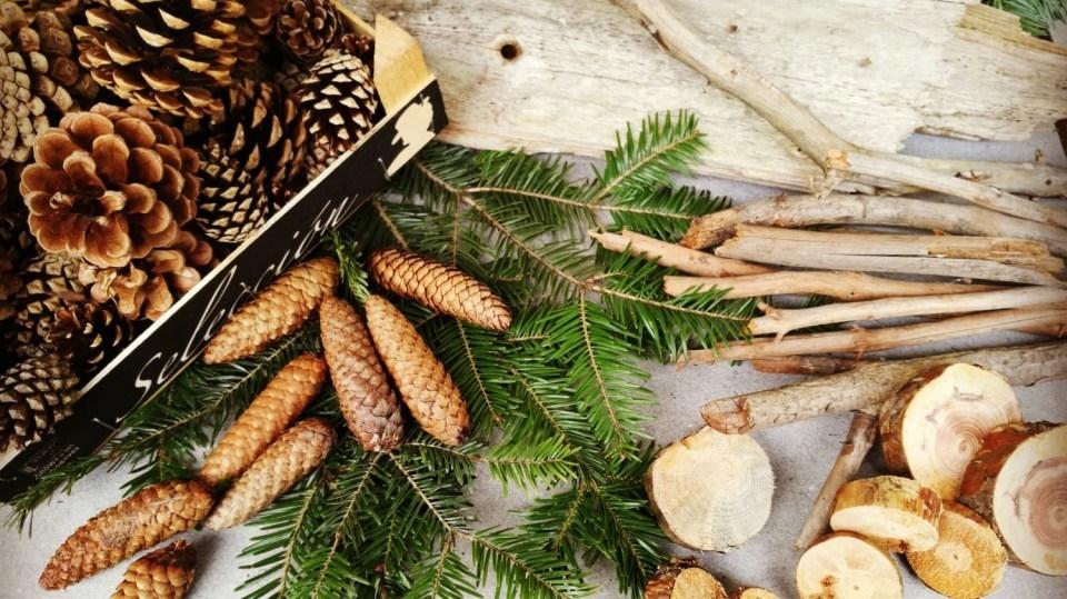 Materiál na vánoční dekorace si letos přineste zlesa: Přírodní poklady, které se vám budou hodit