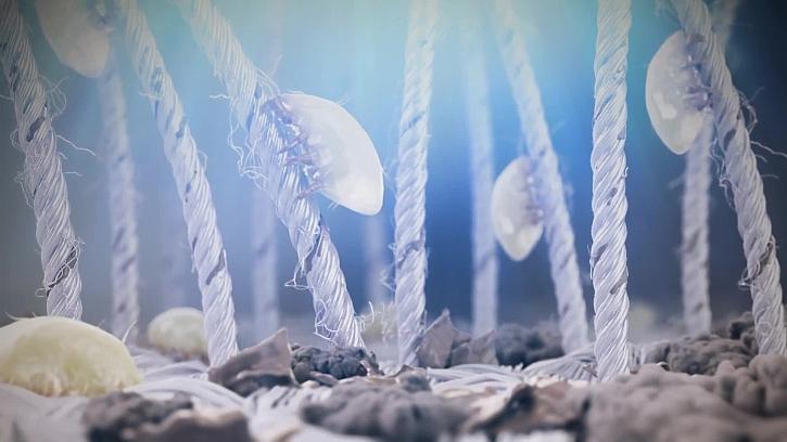 Světlem proti roztočům