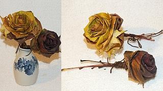 Podzimní růže ze spadaných barevných listů