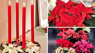 Šmrncovní adventní věnec z formy na bábovku a vánočních hvězd