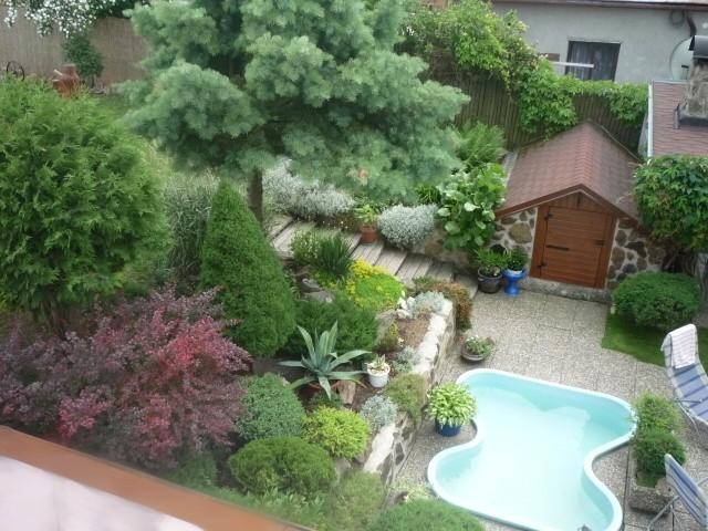 Zahrada naší čtenářky aneb pochlubte se také