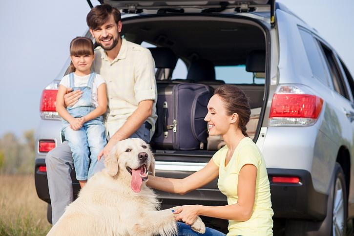 Aby bylo cestování se psem v pohodě, musíme dodržet několik pravidel (Zdroj: Depositphotos)