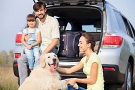 Jak se postarat o psa během cesty autem?