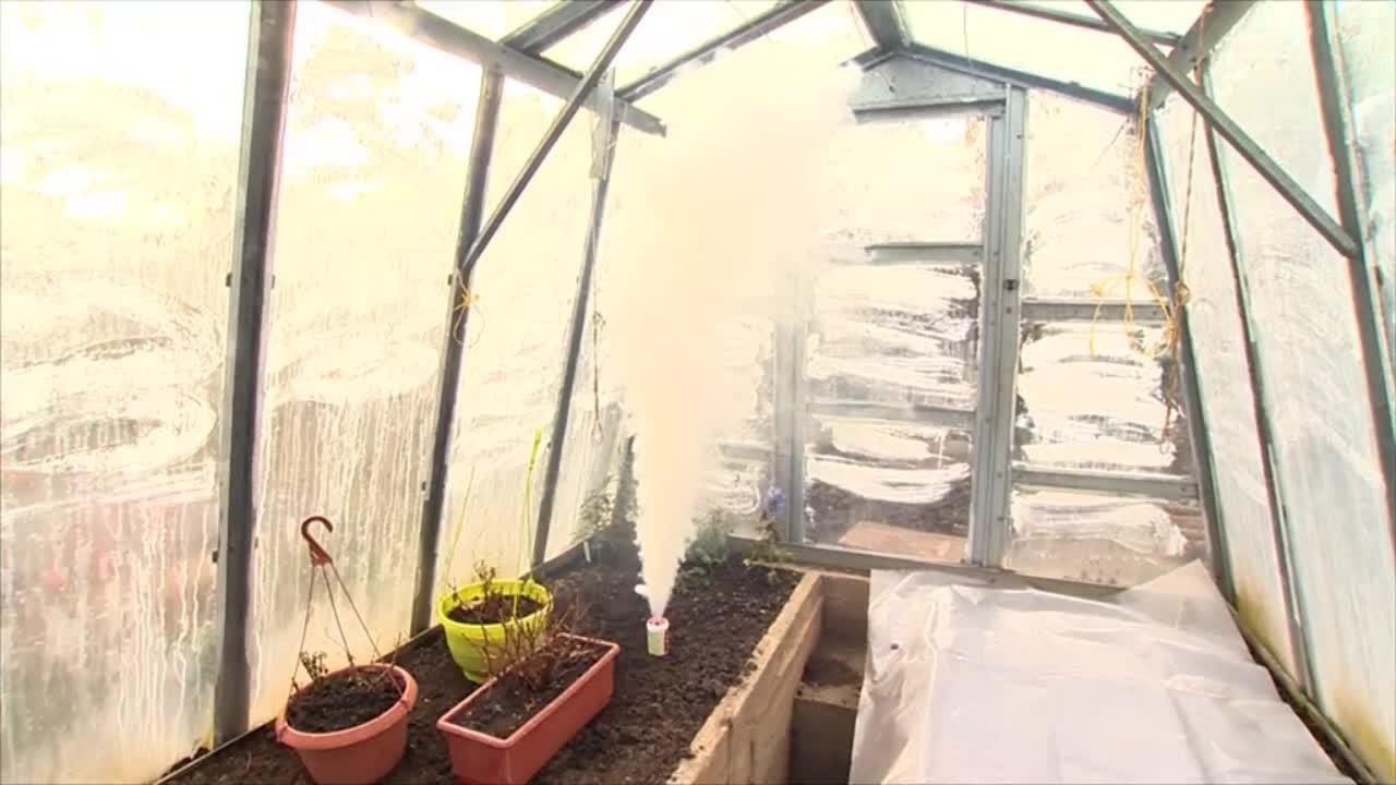 Jak vydesinfikovat skleník? Použijte dýmovnici!
