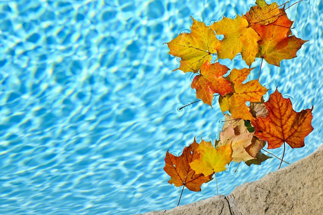 obrázek tématu: Zazimování bazénu