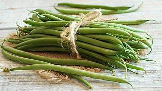 Výsev fazolí: Na jaké odrůdy keříčkových i tyčkových fazolí se můžete spolehnout