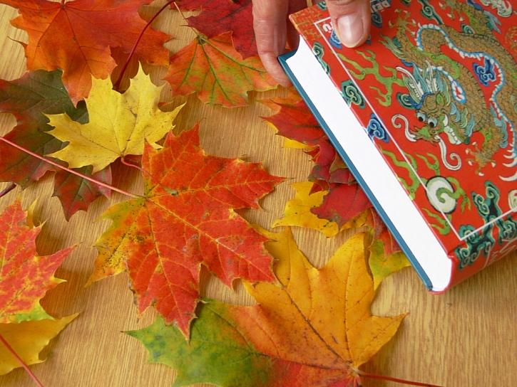 Jak vyrobit balící papír s listy pomocí sava