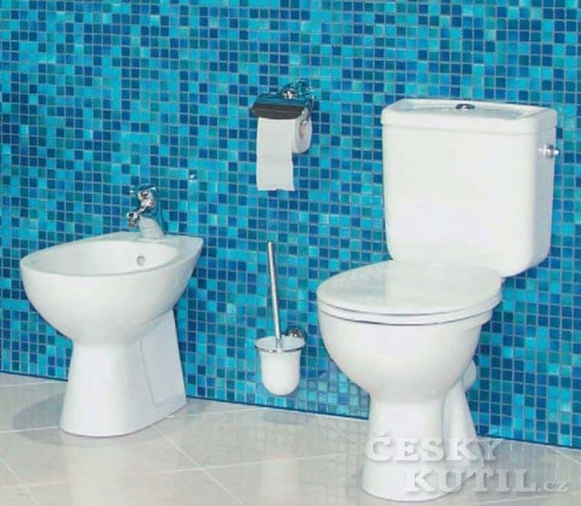 Výměna WC se musí občas provést