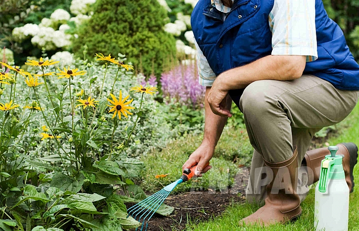 Úklid jarní zahrady od plevele