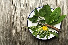 Je čas na jarní detoxikační kúru