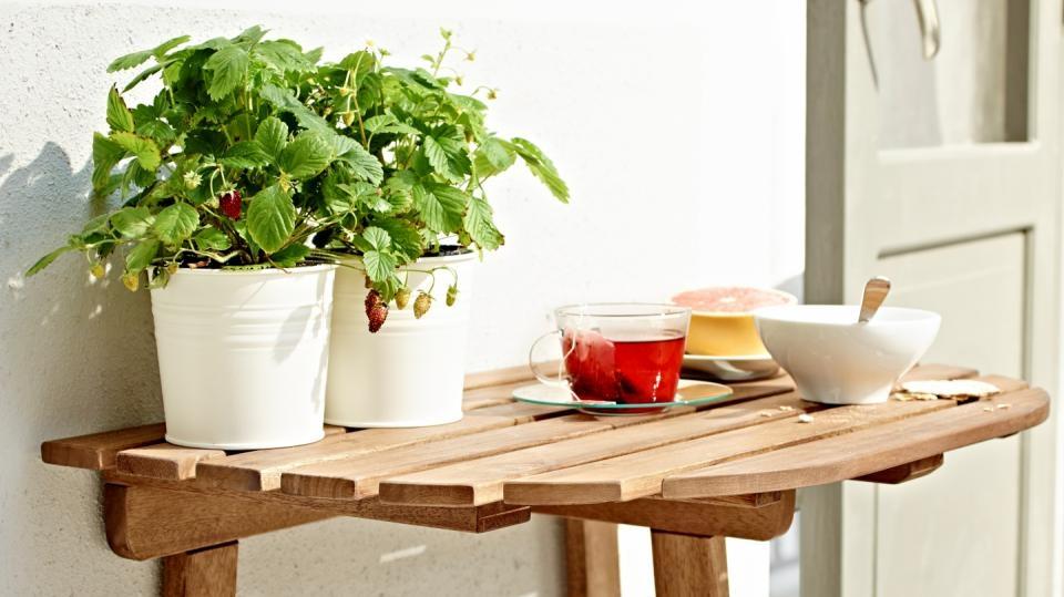 Jak osázet balkon podle světových stran: Jedlá zahrada vkvětináčích