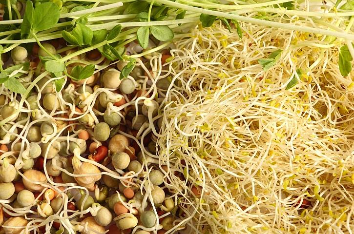 Naklíčená semínka obohatí v zimě náš jídelníček o vitamíny (Zdroj: Depositphotos)