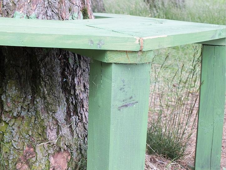 Lavička kolem stromu