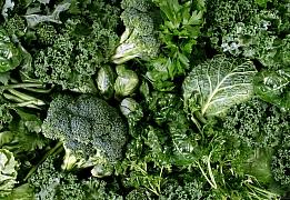 Zelenina, která snese mráz