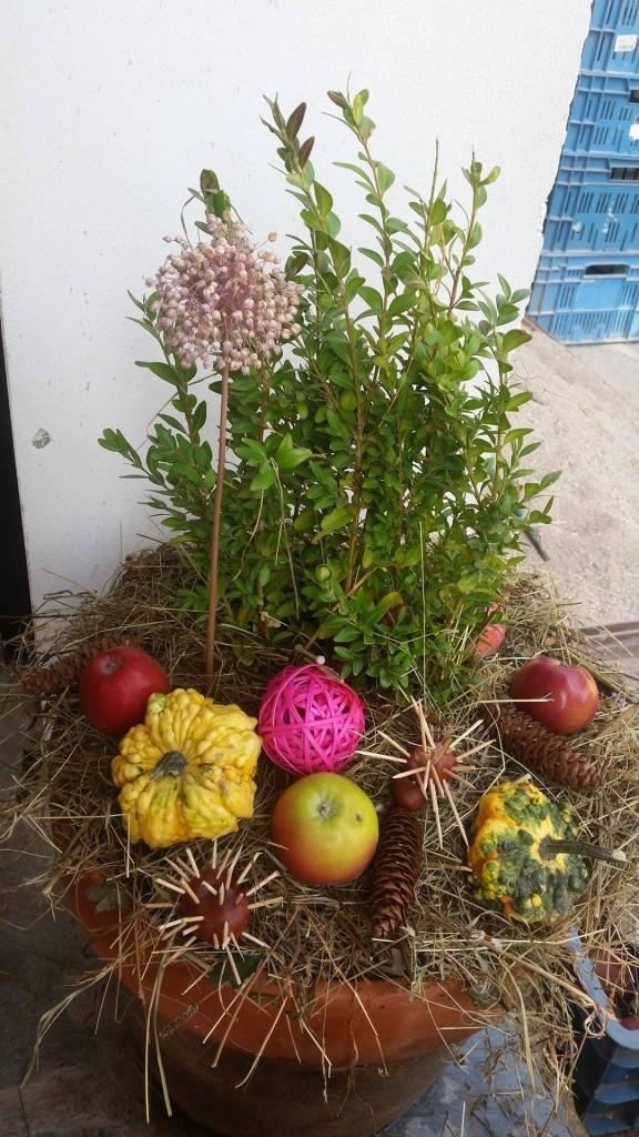 Podzimní dekorace nejen z dýní - tipy od naší čtenářky