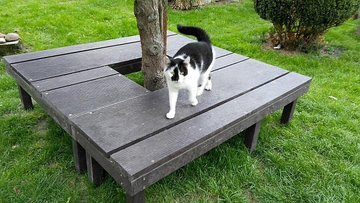 Vyrobte si posezení na zahradě z odolného materiálu (Zdroj: Transform)
