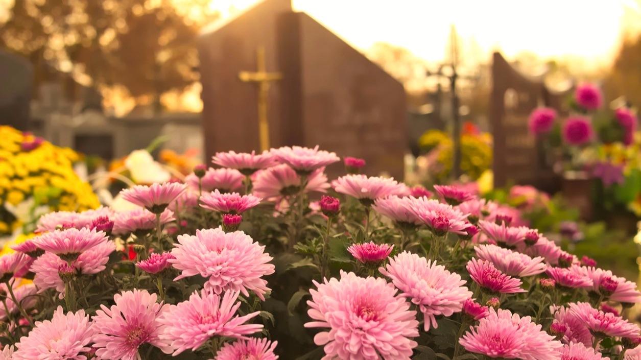 Hřbitovní kvítí aneb Když místo posledního odpočinku připomíná rozkvetlou zahrádku