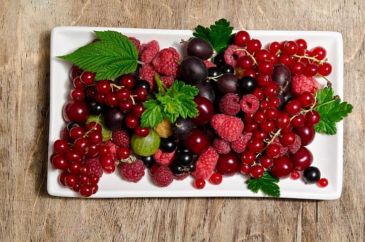 Výsadba drobného ovoce ponese své plody (Zdroj: Depositphotos)
