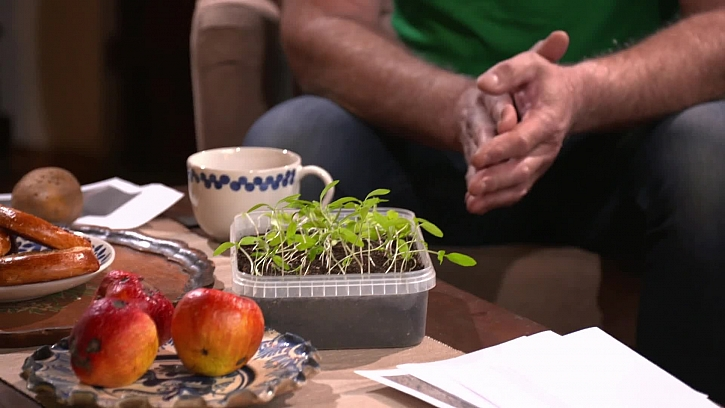 Pěstování v bytě