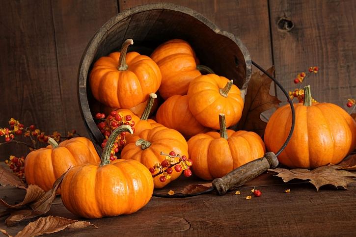 Z dýní vytvoříte tradiční i netradiční pochoutky a nebo skvělou dekoraci (Zdroj: Depositphotos)