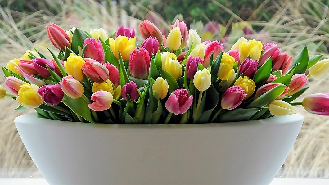MDŽ: Jak na to, aby kytice vydržela dlouho krásná